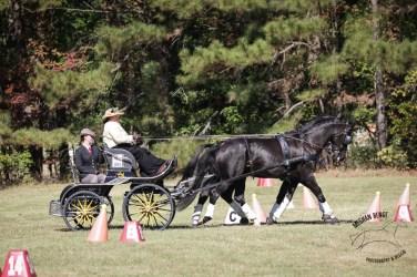 Keady Cadwell with Harmony Sporthorses