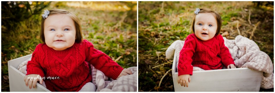 Christmas Tree Farm Mini Sessions.Christmas Tree Farm Mini Sessions Michigan Family