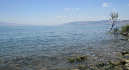 The of Galilee