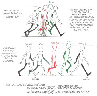 walk-cycle2