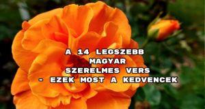 A 14 legszebb magyar szerelmes vers - ezek most a kedvencek