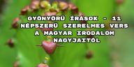 Íme 11 népszerű szerelmes vers a magyar irodalom nagyjaitól.