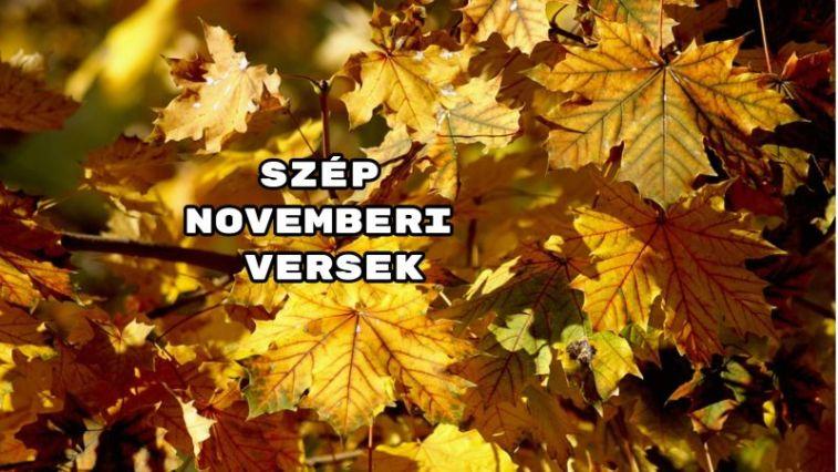 Íme a szép novemberi versek!
