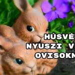Húsvéti nyuszi versek ovisoknak