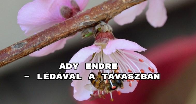 JöjjönAdy Endre - Lédával a tavaszban verse.