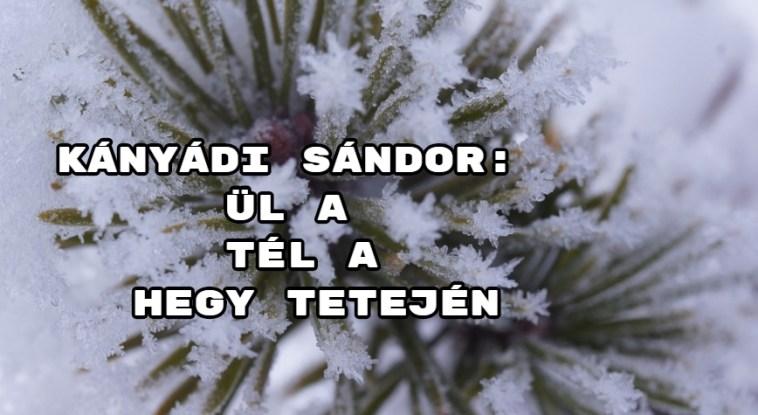 JöjjönKányádi Sándor Ül a tél a hegy tetején verse.
