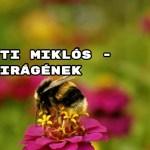 Ajánljuk! Radnóti Miklós - Virágének