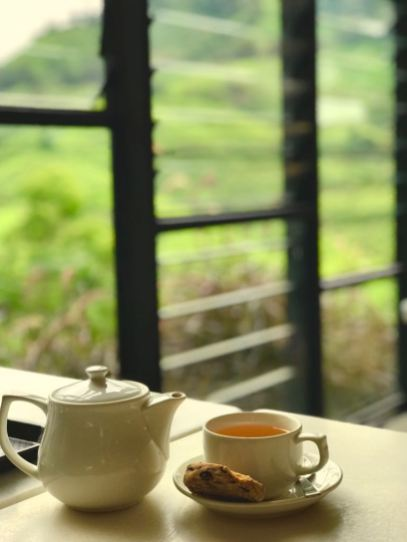 Tea at Boh Tea plantation, Cameron