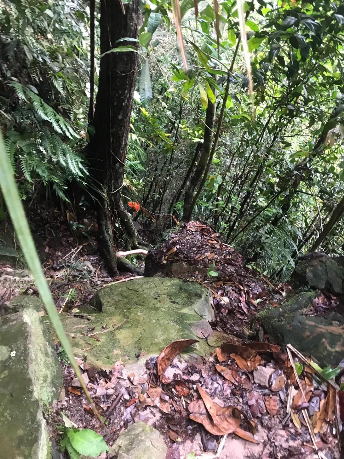 Gunung Panti Hilke 9