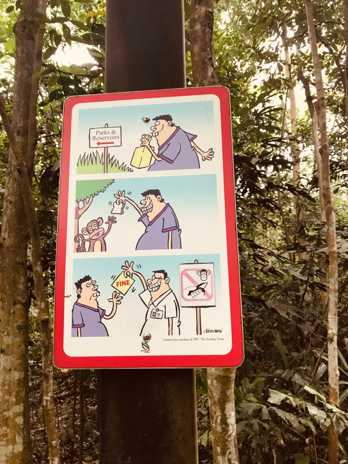 Comedy at Bukit Timah trail