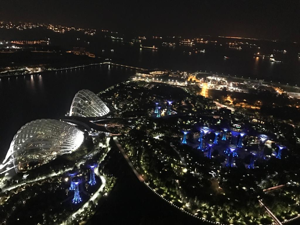The view of Gardens By the Bay from Ce La vi Club at Marina Bay Sands.