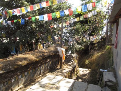 Prayer flags let you know you're coming into town