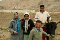I helped plant barley at high altitude with the Ahmad family