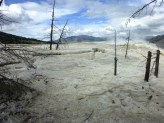 Magnificent desolation.