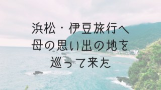 浜松と伊豆旅行へいって