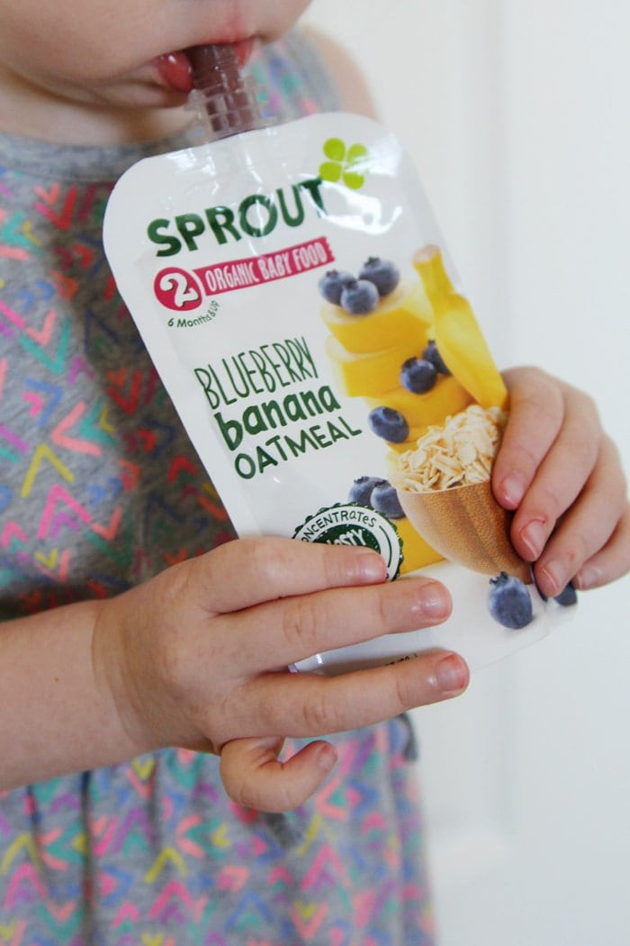sprout-organics-blueberry-banana-oatmeal