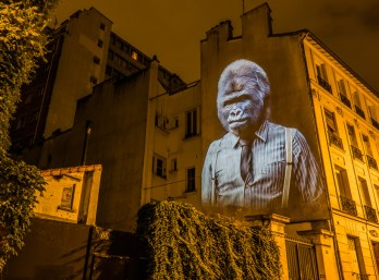 Julien Nonnon,Projection mapping Designboom