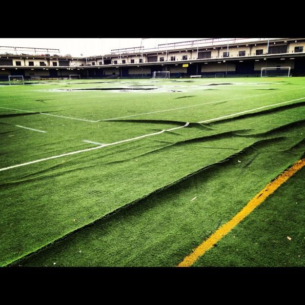 Our Beloved Field