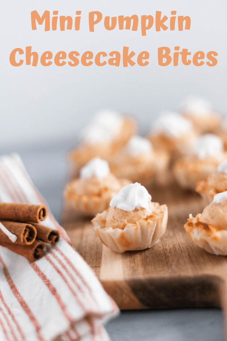 Mini Pumpkin Cheesecake Bites are a super simple dessert recipe everyone will love this fall. No bake pumpkin cheesecake filling and crispy dessert shells.