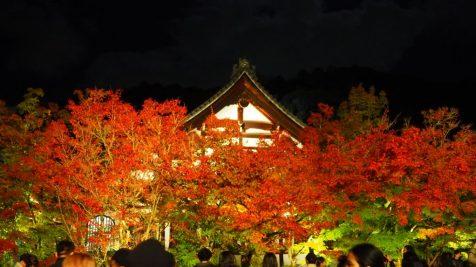 kyoto2018