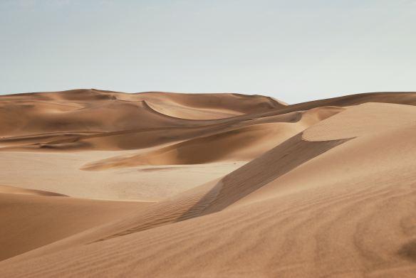 Desert Keith Hardy