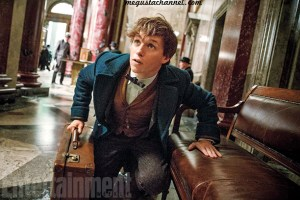 fantastic-beasts-01 copia