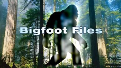 bigf_bigfoot_files_et_19sehis-19sehj1