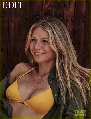 gwyneth-paltrow-says-the-criticism-she-gets-has-got-a-few-layers-to-it-03