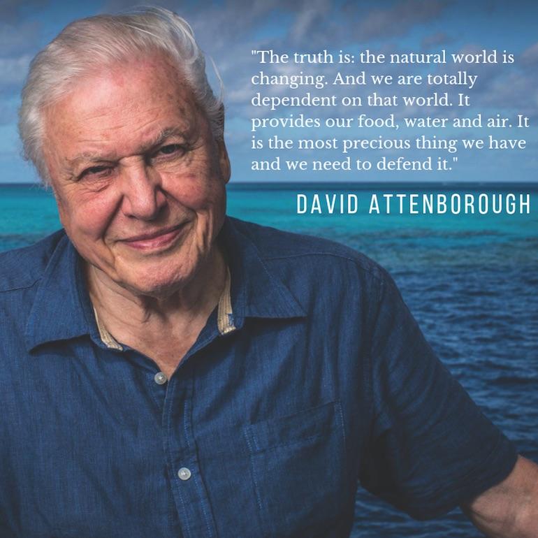 David Attenborough portrait image with nature quote
