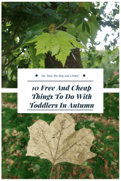 10 Free And Cheap Things To Do With Toddlers In Autumn