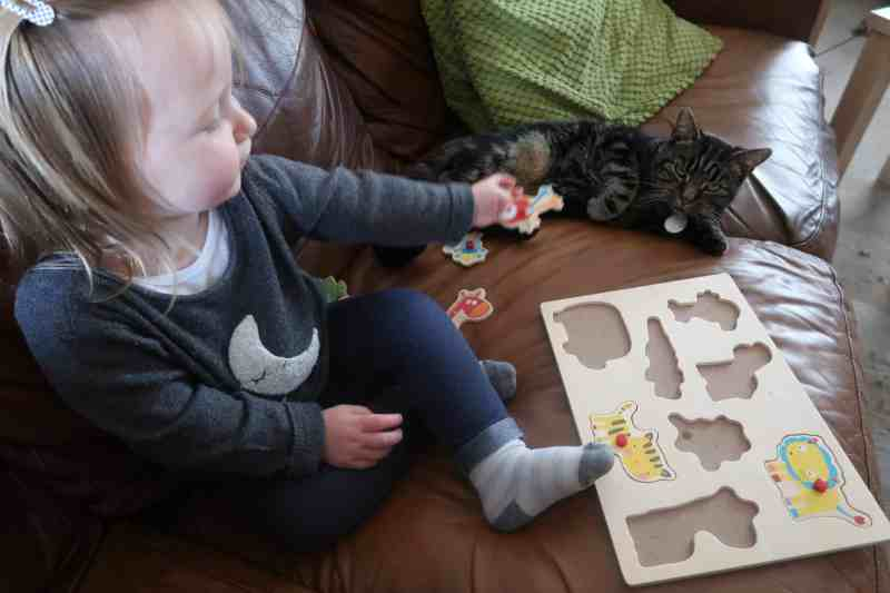 Why We Use A Pet Sitting Service