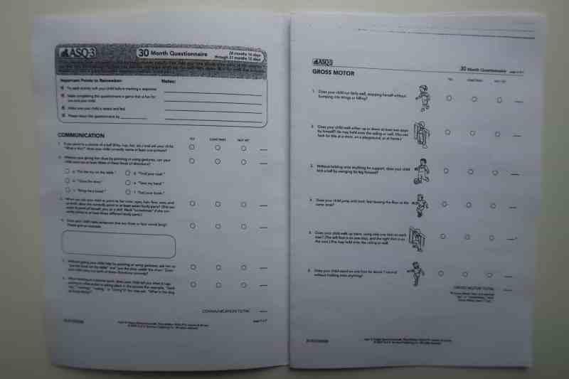 ASQ-3 questionnaire