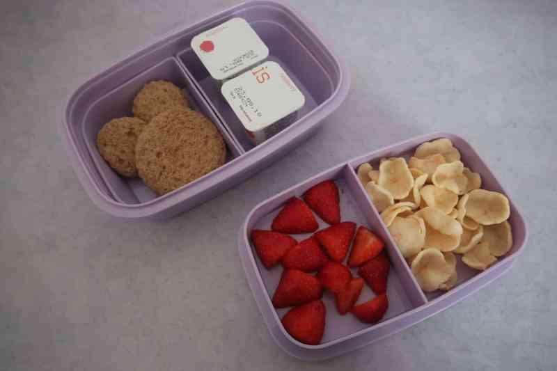 Petit Fernand lunchbox