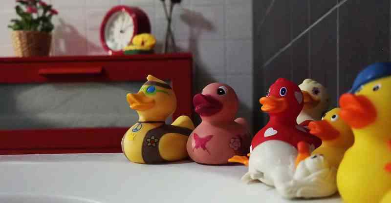 Rubber ducks in bathroom