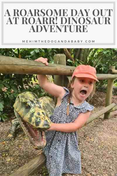 A Roarsome Day Out At Roarr! Dinosaur Adventure