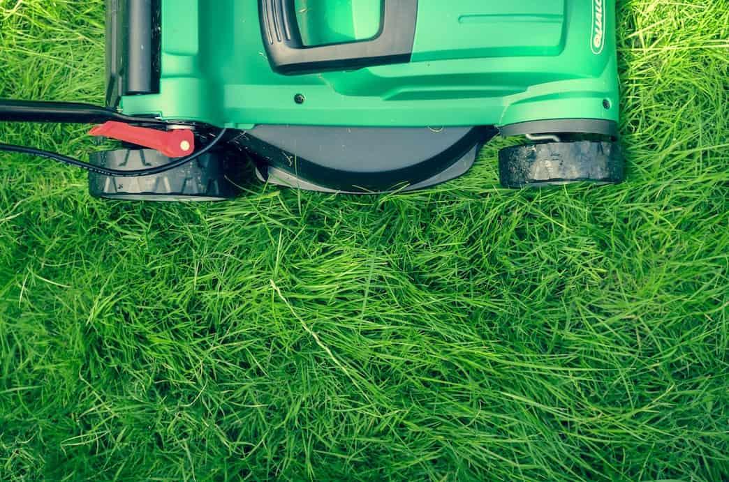 Green lawnmower on grass