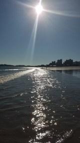 November Sunbeams & Beach Bubblers