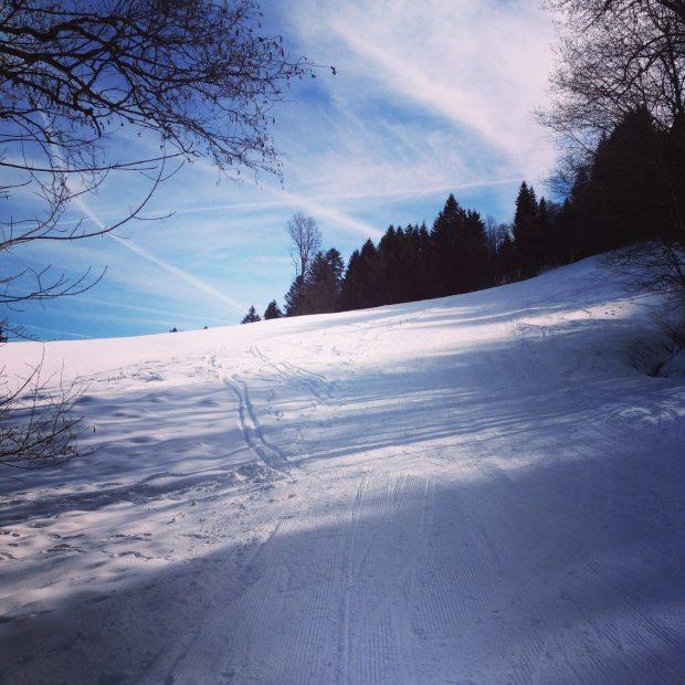 Mittelstück des Aufstiegs - Skitouren-Lehrpfad am Eckbauer, Garmisch-Partenkirchen