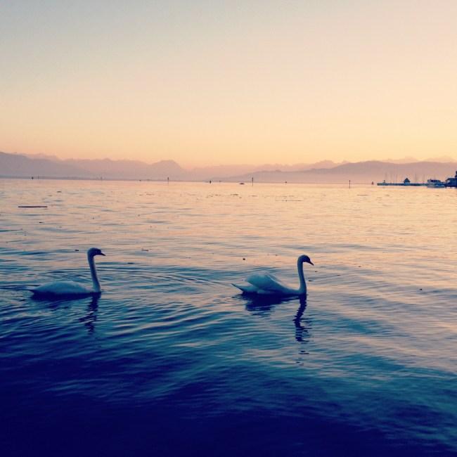 Abendstimmung, Lindau, Bodensee