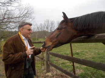 041116 Gerhard feeds the horse