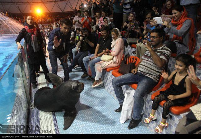 دلفیناریوم در ایران، کارکردی تفریحی بر پایه بهرهکشی از پستانداران دریایی است.