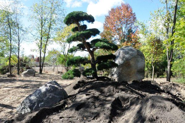 japanese garden frederik meijer