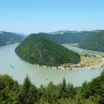Die Donauschlinge