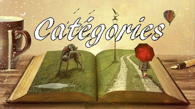 les catégories littéraires
