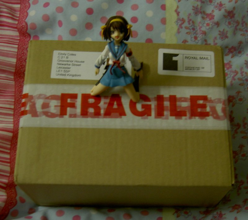 Haruhi has discovered a package....