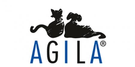 Hund, Hundeversicherung, Chihuahua, Mini Chihuahua, AGILA, Haustierversicherung, Haustierkrankenversicherung, Chihuahua Versicherung, Chihuahua krank, Chihuahua zittert, Hund krank,OP-Schutzversicherung Hund, Haftpflicht Hund, Krankenversicherung Hund, Hund Versicherung, Hund krank, Agila Versicherung, Agila Haustierversicherung, Check24 hundeversicherung, hundeversicherung günstig, hundekrankenversicherung, Erfahrungen Agila, Agila Erfahrungen, Erfahrungsbericht Agila, Impfung, Hunde OP, Hund Narkose, Hundeversicherung Vergleich,