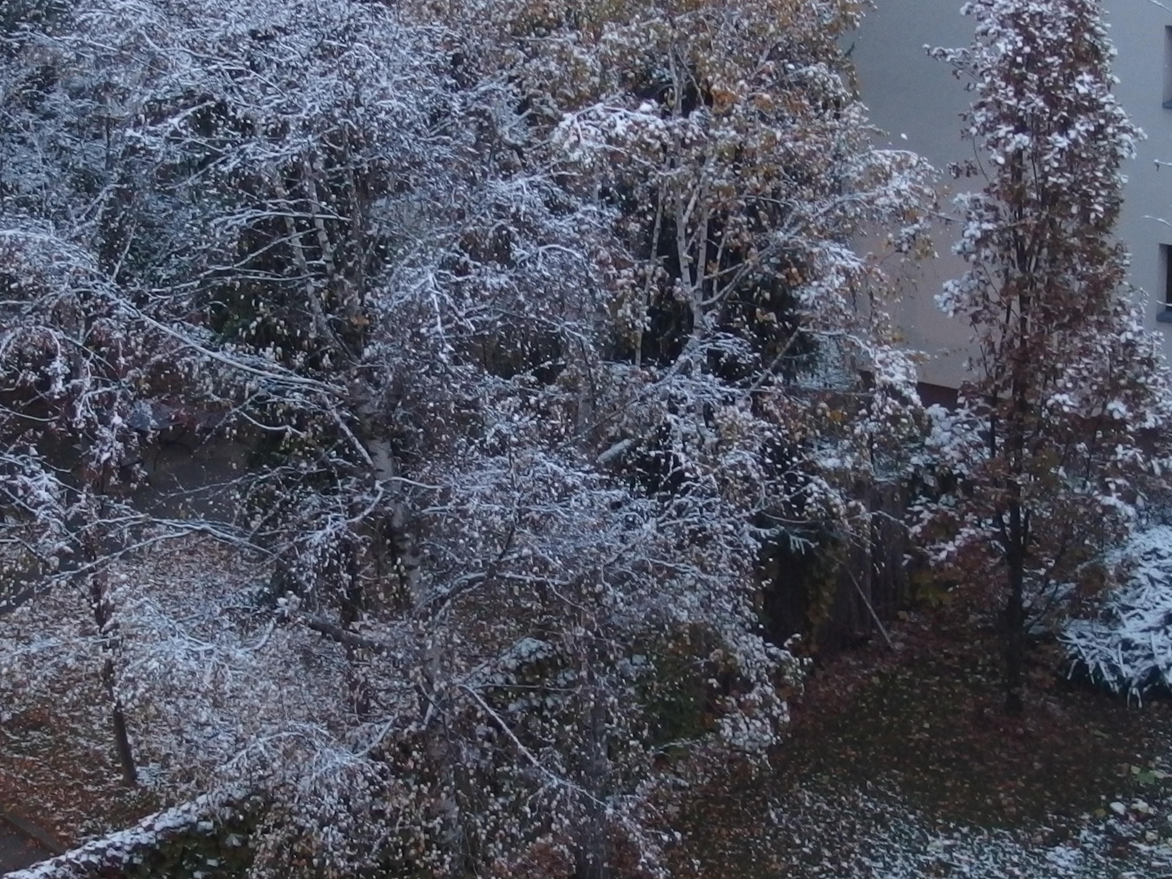 5 Ideen rund um den Winterbalkon
