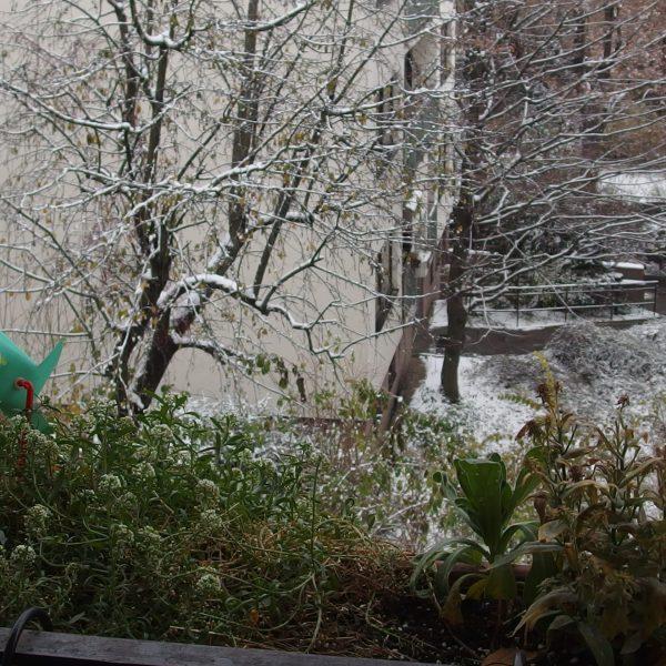 Praktisches aus dem Balkon im Winter: 3 Ideen