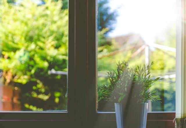 Grün vor dem Fenster kann glücklich machen