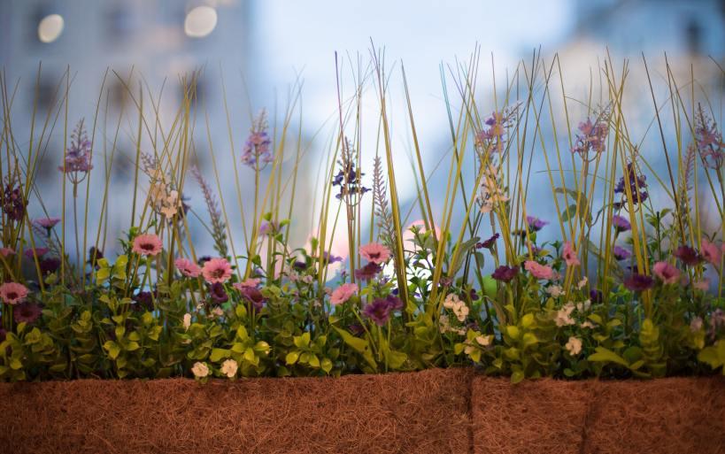 Auch Blumen können als natürlicher Sichtschutz eingesetzt werden